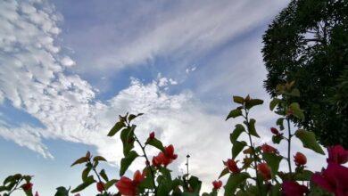 Photo of ഖത്തറിലെ താപനില വീണ്ടും താഴേക്ക്, കാലാവസ്ഥാ റിപ്പോർട്ടുമായി ക്യുഎംഡി